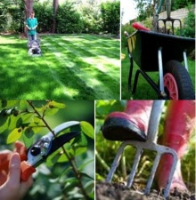 Lawn Garden Care the City of Liberty Official Website