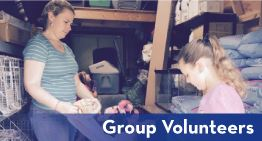 Group-Volunteers-2