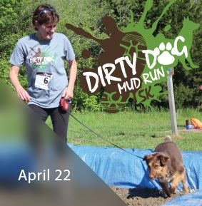 Dirty Dog Spotlight