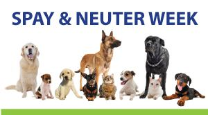 2018-spay-and-neuter-week-carousel